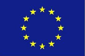 EU icon